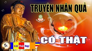 Gambar cover Truyện Ngắn Phật Giáo - Những Câu Chuyện Nhân Quả Báo Ứng Có Thật - Kể truyện đêm khuya ( rất hay )