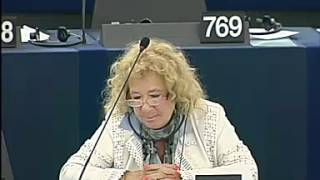 MEP Jörg Leichtfried bei der Aussprache zu ACTA - 2