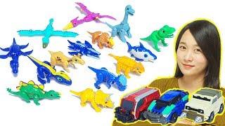 공룡메카드 장난감 캡처카 티톤 알키온 아렌 3종 타이니소어 11개 전제품 DinoMecard shooting toys