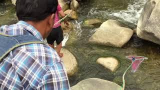 Susan electro fishing