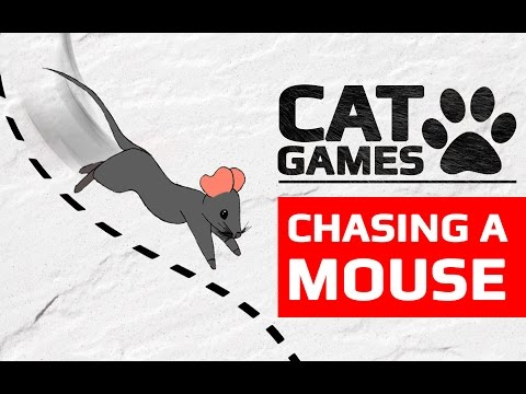 CAT GAMES - 🐭 CHASING A MOUSE (ENTERTAINMENT VIDEOS FOR CATS TO WATCH) 60FPS