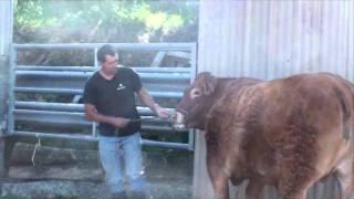 Départ de Déserte au Sommet de l'élevage