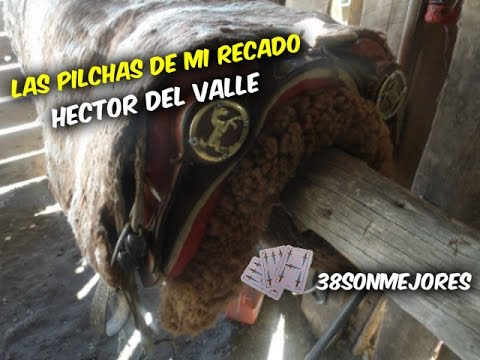 las-pilchas-de-mi-recado-|-hector-del-valle