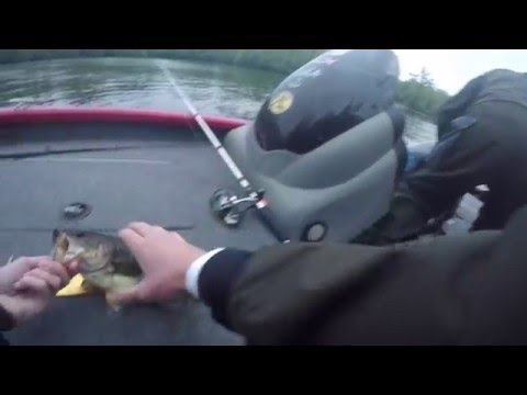 Bass Tournament On The North East Cape Fear River