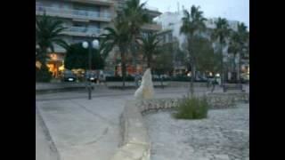 MALLORCA URLAUB in Cala Millor