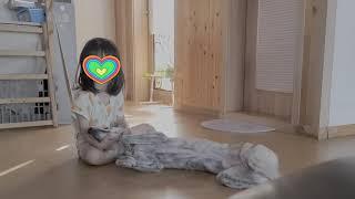 진돗개 강아지 동생으로 인정한 다섯살 공주님
