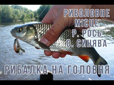рыбалка держи реке ирпень рядком  киева