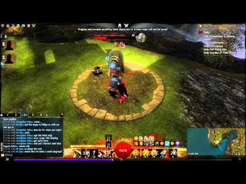 Into The Mists - Guild Wars 2 - PvE, WvW and sPvP Character