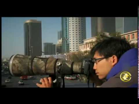 A glimpse into lives of Chinese wildlife photographers