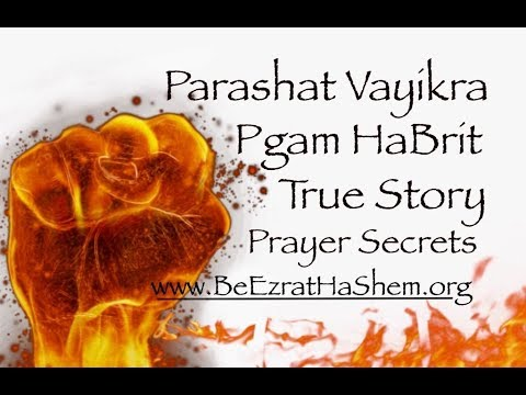 Shiur Torah #83 Parashat Vayikra, Prayer Secrets, Pgam Habrit (Wasting Seed) THE TRUE STORY