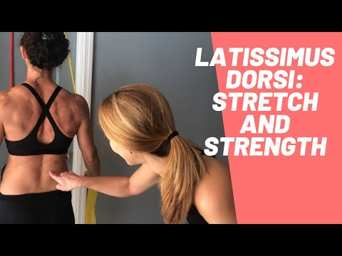Latissimus Dorsi Lat Exercises and Stretch (Latissimus Dorsi Exercises/Workout)
