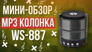 Портативная блютуз колонка WS887 + FM-радио | Мини-обзор+тест