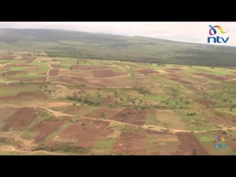 A Committee of the forest restoration task force tours Mt Kenya