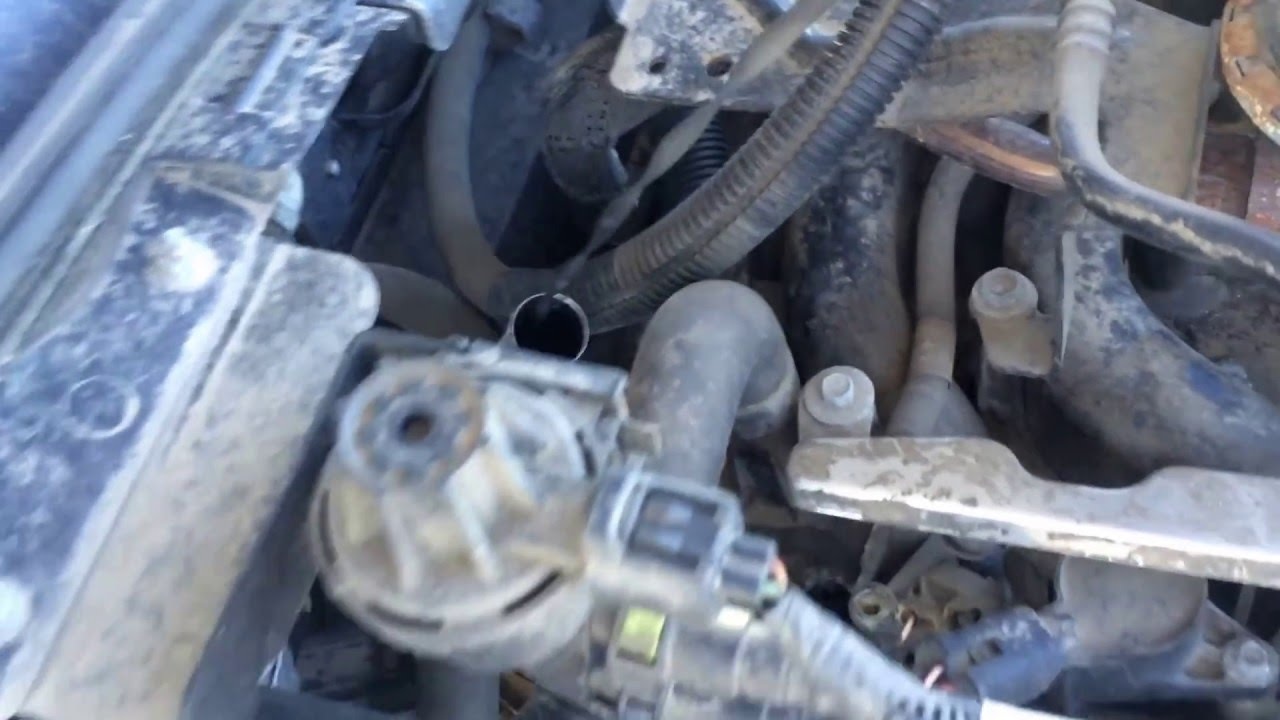 Ford Crown Victoria 2008 2011 Transmission Fluid Check