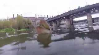 Рыбалка на щуку (р. Миасс, Челябинск)(Прямо в черте города Челябинска, напротив ЧГРЭС. Видео загружено для показа на туристическом портале Челяб..., 2014-12-04T12:18:36.000Z)