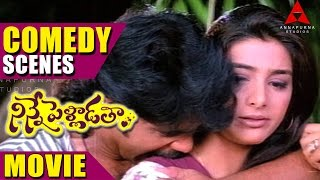 Ninnepelladatha Movie Comedy Scenes - Ninne Pelladatha Movie - Nagarjuna,Tabu