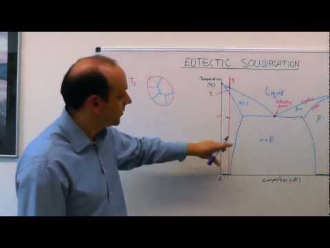 3.1 | MSE104 - Eutectic Solidification