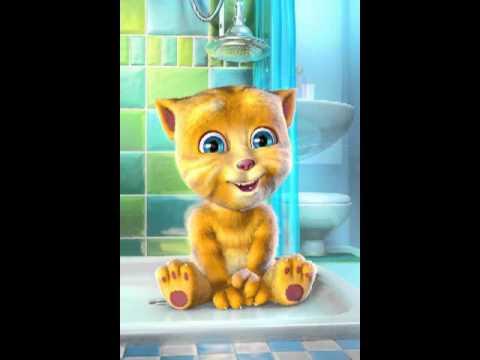 I'm a fat kitty cat