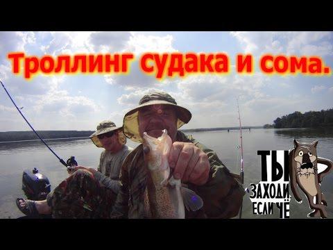 рыбалка сома судака на волге