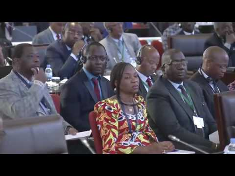 AU SUMMIT |Opening  29th Ordinary Session of the Executive Council -13July 2016
