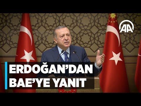 Cumhurbaşkanı Erdoğan'dan Birleşik Arap Emirlikleri'ne 'Fahrettin Paşa' yanıtı