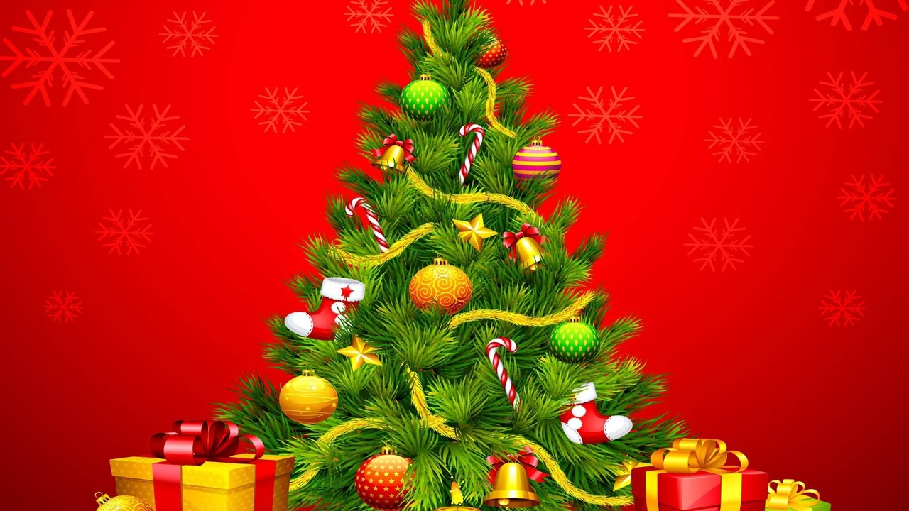 interesting facts about christmas trees why do we put up christmas trees during christmas