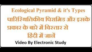 Ecological Pyramid & its Types/पारिस्थितिकीय पिरामिड और इसके प्रकार  हिंदी में  