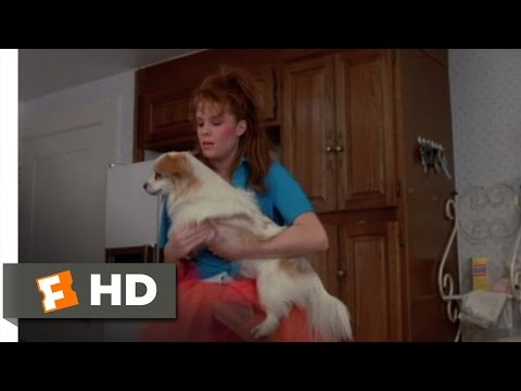 Teen Witch (6/12) Movie CLIP - Richie the Dog (1989) HD