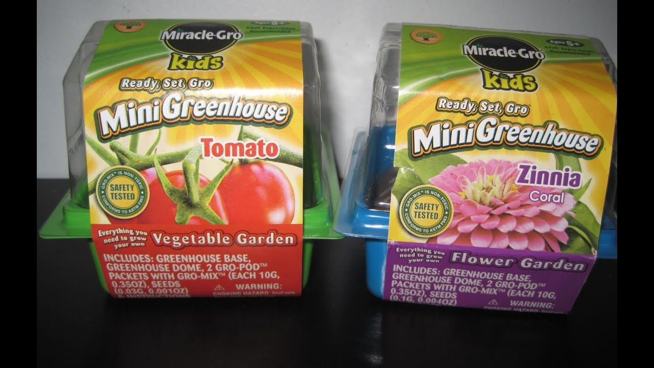 Miracle Gro Kids Mini Greenhouse   French Marigold (Review)   YouTube