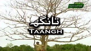 PTV Sindhi Drama || Natak Rang || Taangh