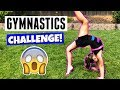 FUN FAMILY GYMNASTICS CHALLENGE!