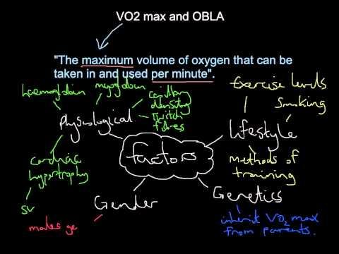 VO2 max and OBLA