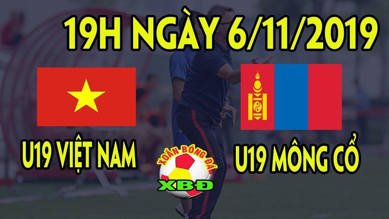 Tin Bóng Đá Việt Nam 6/11: Trực Tiếp Thi Đấu U19 Việt Nam vs U19 Mông Cổ