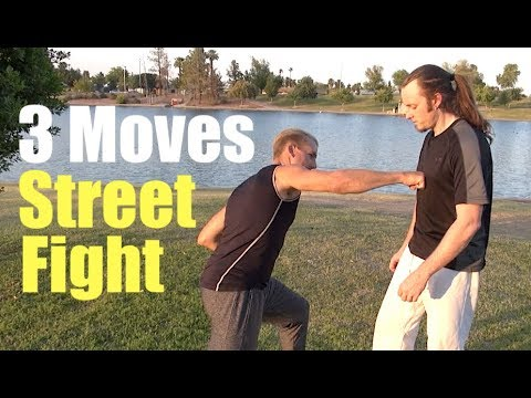 3 Real KUNG FU MOVES to WIN THE STREET FIGHT!