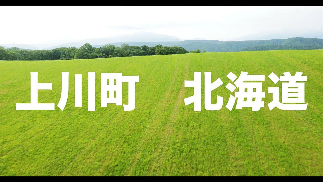 【空の旅#20】「丘を超えたら野生の鹿!」空撮・多胡光純 北海道_Hokkaido aerial