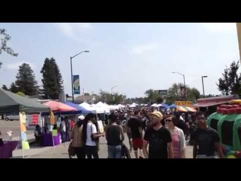 Oakland Laurel Street Festival Video 1