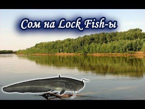рыбалка сома на урале бесплатно