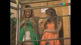 Simn y Melody 8 (3T)