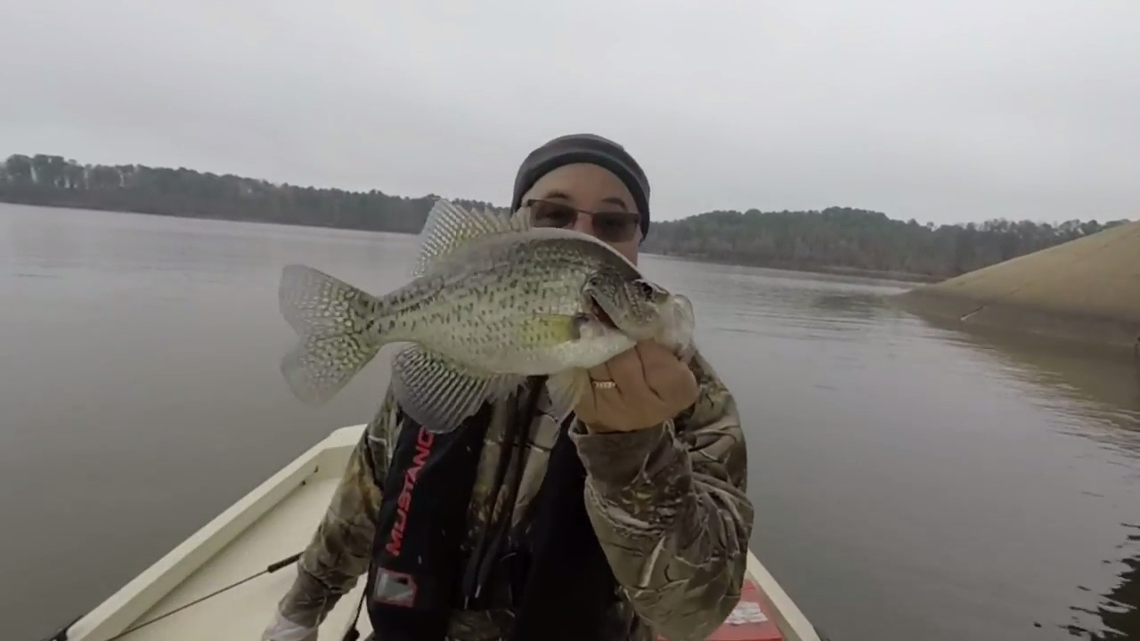 Crappie fishing on lake o 39 the pines spring 2017 youtube for Lake o the pines fishing report