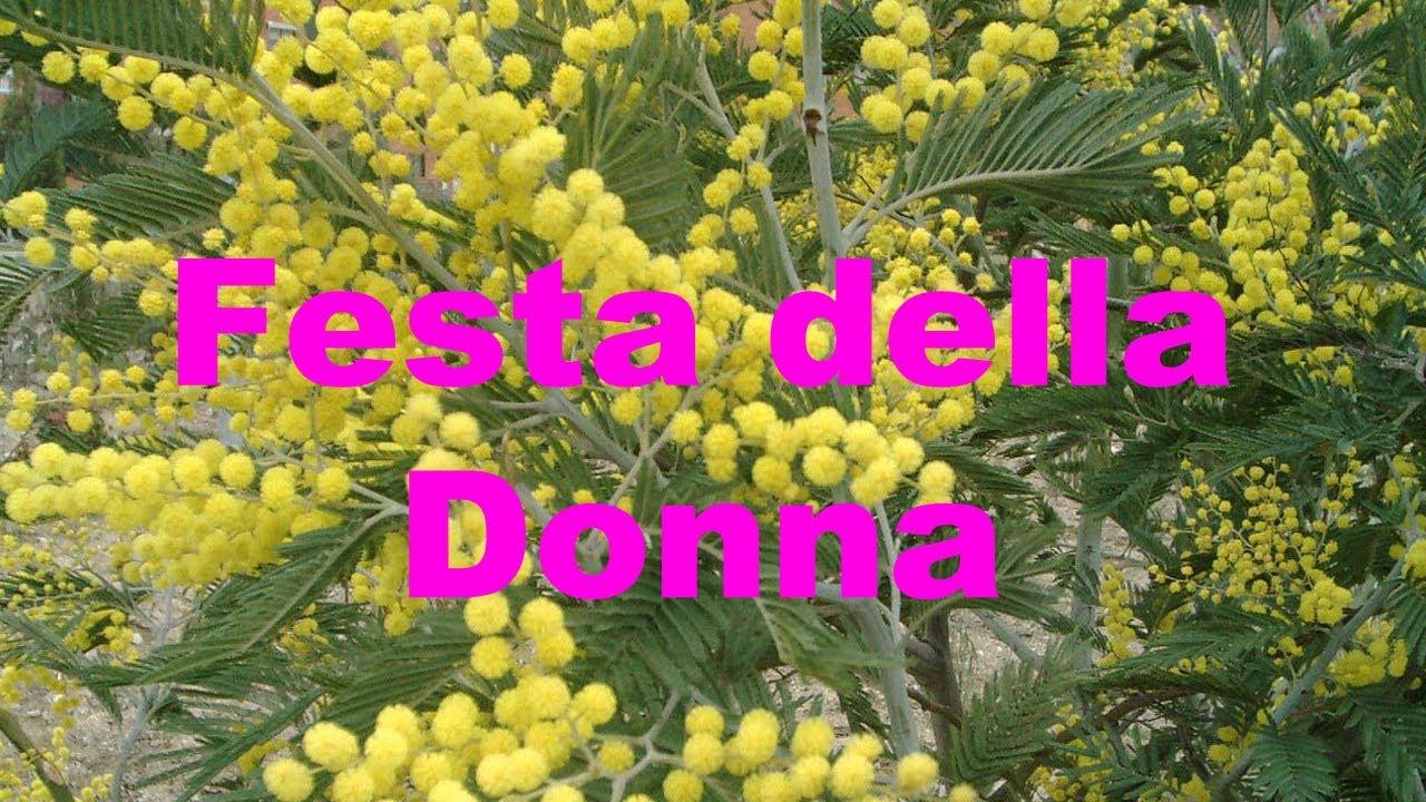 Festa Della Donna 8 Marzo 2012 Video Youtube
