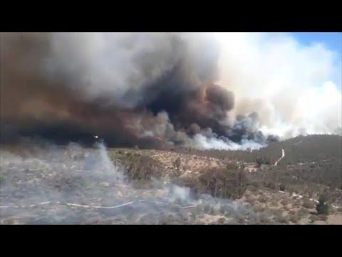 4 Focos De Incendios Forestales Se Mantienen Activos En Valparaíso