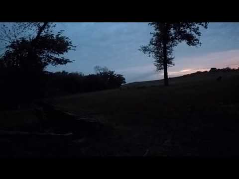 Wild and Uncut-Early Morning Hunt