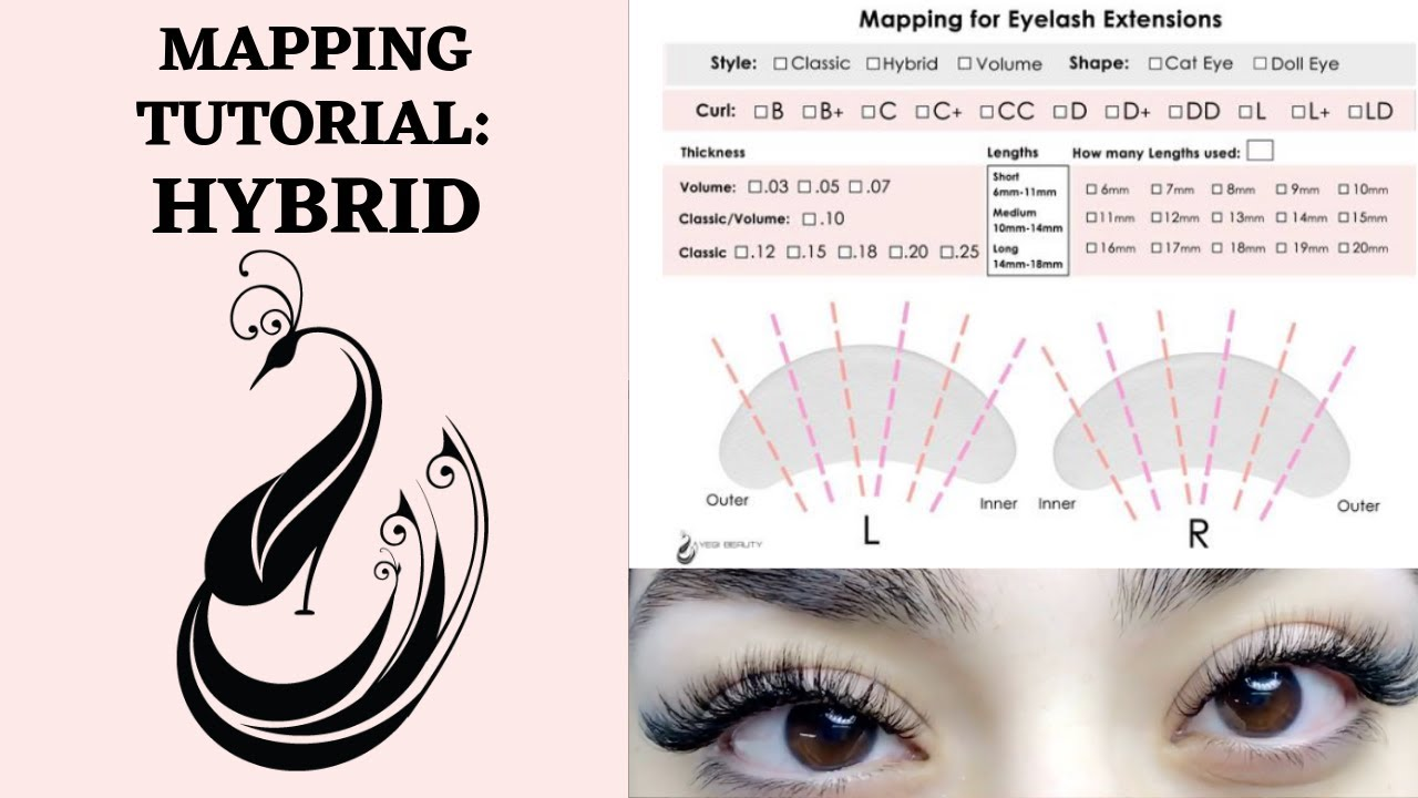 ff1a005b7b0 Complete Mapping Tutorial for a Hybrid Look - Doll Eye   Eyelash Extensions  101