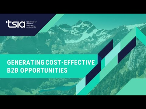 Generating Cost-Effective B2B Opportunities