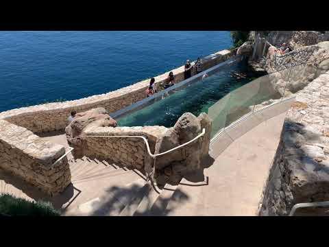 Monaco Aquarium | Monaco Musee Oceanographique | French Riviera