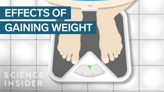 What Does Gaining Weight Do To Your Body?