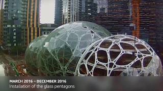 The Spheres - grown in 60 seconds