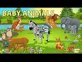 Baby Animals Names And Sounds  Mp3 - Mp4 Download