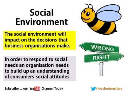 Bee Business Bee Ethical Environment Presentation