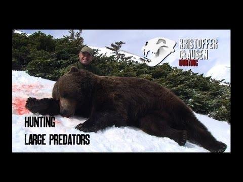 Hunting large predators. Jakt på store rovdyr av Kristoffer Clausen. Film